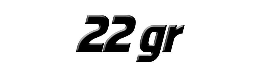 22 Gramos
